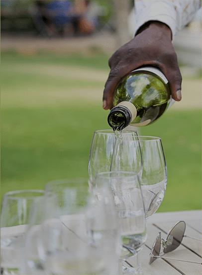 Wine Dine