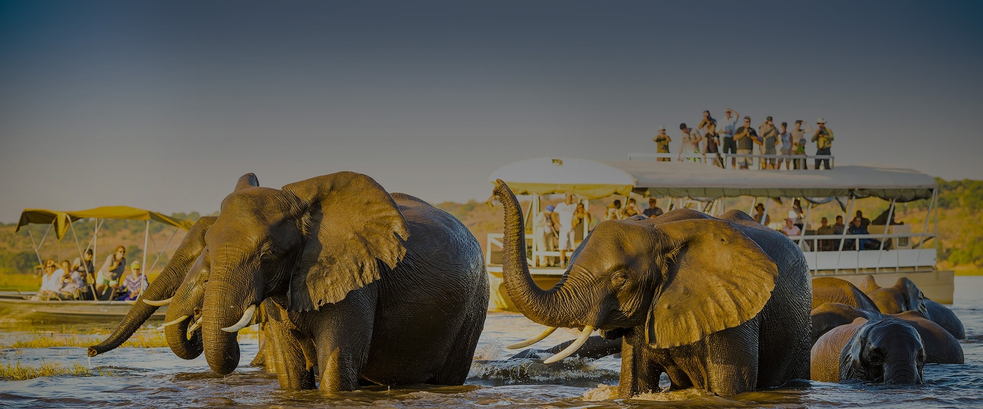 Best African Safari Destinations