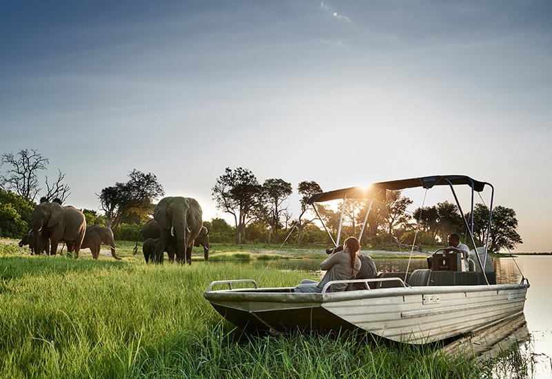 Private Boat Trekking Okavango Land & Water Safari