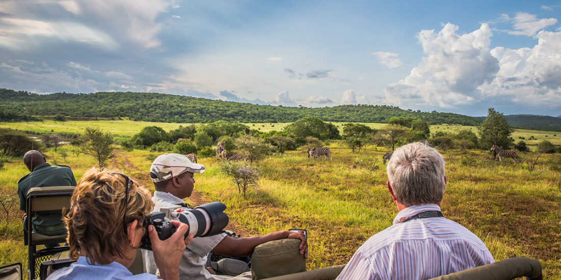 Plan a safari in Africa for 2021