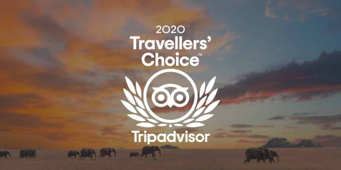 Jewel of Africa Safaris Awarded 2020 Trip Advisor Traveller's Choice Award